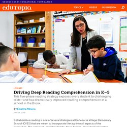 Promoting Deeper Reading Comprehension in Elementary School