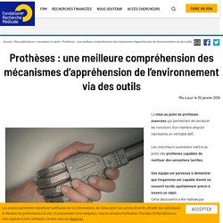 Prothèses : une meilleure compréhension des mécanismes d'appréhension de l'environnement via des outils