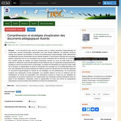 Compréhension et stratégies d'exploration des documents pédagogiques illustrés