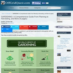 GARDENING: A Comprehensive Guide From Planning to Harvesting, and More (6 pages)