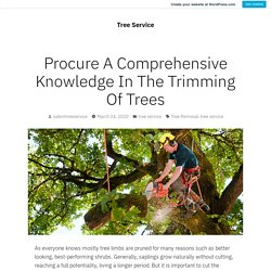 Procure A Comprehensive Knowledge In The Trimming Of Trees
