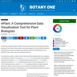 ePlant: Data Visualization Tool for Plant Biologists