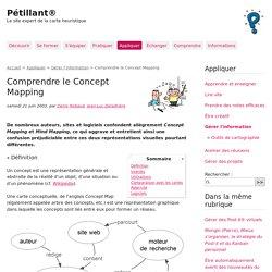Comprendre le Concept Mapping - Pétillant®