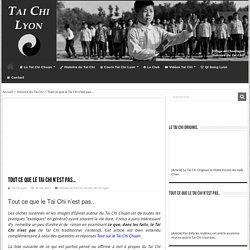 Ce que le Tai Chi n'est pas - Comprendre par delà les beaux discours