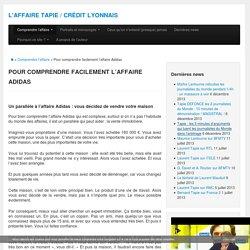 Affaire Tapie : Parallèle Pour Comprendre Facilement l'Affaire Adidas