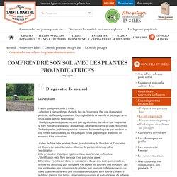 Comprendre son sol avec les plantes bio-indicatrices