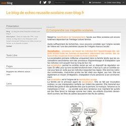 2) Comprendre ces inégalités scolaires. - Le blog de echec-reussite-scolaire.over-blog.fr