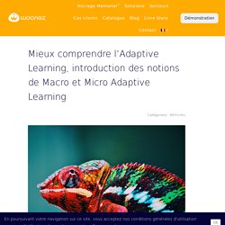 Mieux comprendre l'Adaptive Learning, introduction des notions de Macro et Micro Adaptive Learning
