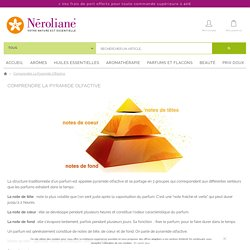Comprendre la pyramide olfactive