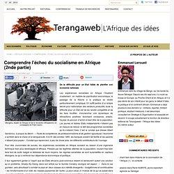 Comprendre l'échec du socialisme en Afrique (2nde partie) - Terangaweb