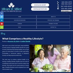What Comprises a Healthy Lifestyle?