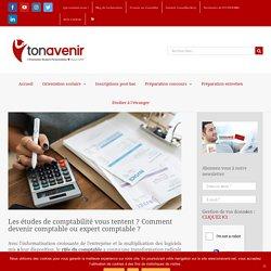 Études de comptabilité : comment devenir comptable, expert comptable ?