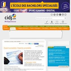 Expert-comptable / Experte-comptable : études, diplômes, salaire, formation
