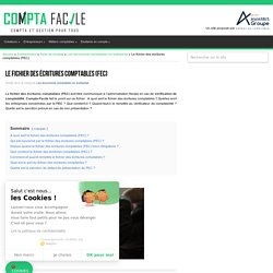 Le fichier des écritures comptables (FEC) : définition, contenu et utilité