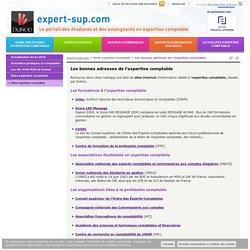 Dunod) : annuaire sites d'expertise comptables (études, métiers, documentation).