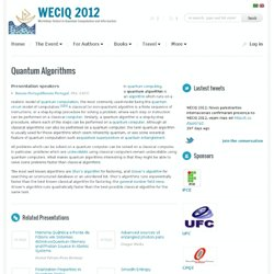 WECIQ 2012 » Workshop-School in Quantum Computation and Information » Quantum Algorithms