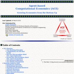 Agent-Based Computational Economics (Tesfatsion)