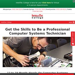Professional Computer Systems Technician