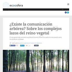 ¿Existe la comunicación arbórea? Sobre los complejos lazos del reino vegetal