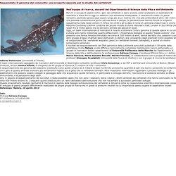 UNIVPM - Comunicato stampa: Sequenziato Il genoma del celacanto: una scoperta epocale per lo studio dei vertebrati