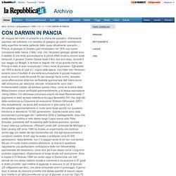 CON DARWIN IN PANCIA