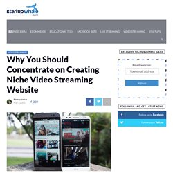 Why You Should Concentrate on Creating Niche Video Streaming Website