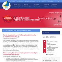 Licence pro Conception de solutions décisionnelles, Morbihan
