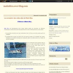 La conception des voiles ailes de Matin Bleu - Le blog de matinbleu.over-blog.com