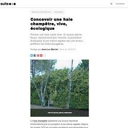 Concevoir une haie champêtre, vive, écologique: Créer une clôture végétale en mariant des arbustes variés