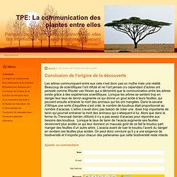 Conclusion de l'origine de la découverte - TPE: La communication des plantes entre elles