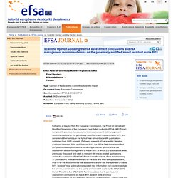EFSA 11/12/12 Scientific Opinion updating the risk assessment conclusions and risk management recommendations on maize Bt11.