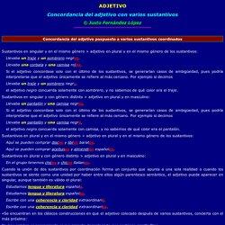 Adjetivo-concordancia con varios sustantivos