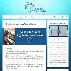 Réseau-Cétacés – Grand concours #QuizzRéseauCétacés