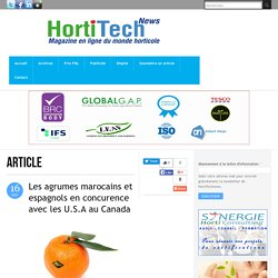 Les agrumes marocains et espagnols en concurence avec les U.S.A au Canada
