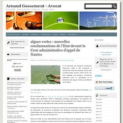 algues vertes : nouvelles condamnations de l'Etat devant la Cour administrative d'appel de Nantes