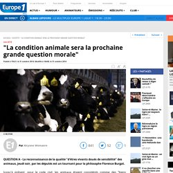 """La condition animale sera la prochaine grande question morale"""
