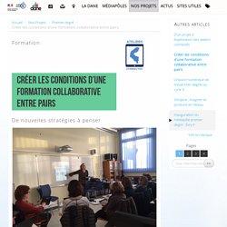 Créer les conditions d'une formation collaborative entre pairs - Délégation académique au numérique éducatif