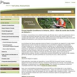 ONTARIO - 2012 - État de santé des forêts en Ontario en 2011