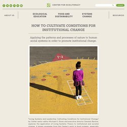 How to Cultivate Conditions for Institutional Change
