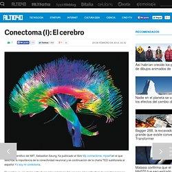 Conectoma (I): El cerebro