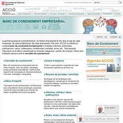 Banc de Coneixement Empresarial
