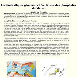 Conférence Les fantastiques gisements à vertébrés des phosphates du Maroc