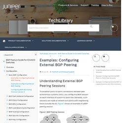 Examples: Configuring External BGP Peering - TechLibrary