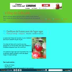Confiture de fraises avec de l'agar-agar - Le blog de Celtica44
