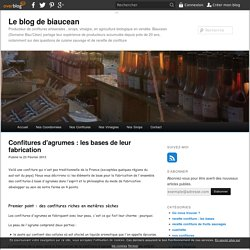 Confitures d'agrumes : les bases de leur fabrication - Le blog de biaucean