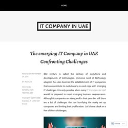 The emerging IT Company in UAE Confronting Challenges – IT Company in UAE