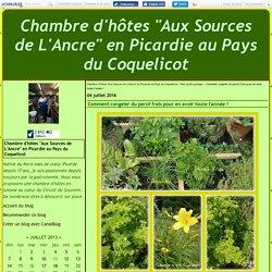 """Comment congeler du persil frais pour en avoir toute l'année ? - Chambre d'hôtes """"Aux Sources de L'Ancre"""" en Picardie au Pays du Coquelicot"""
