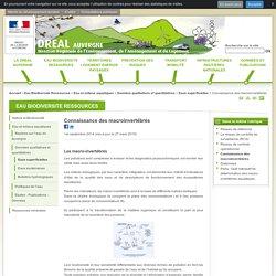 Connaissance des macroinvertébrés - DREAL Auvergne