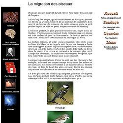 Site de la connaissance - La migration des oiseaux