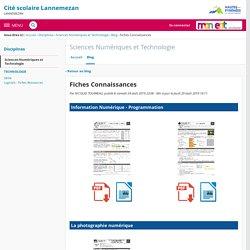 Fiches Connaissances - Sciences Numériques et Technologie - Cité scolaire Lannemezan